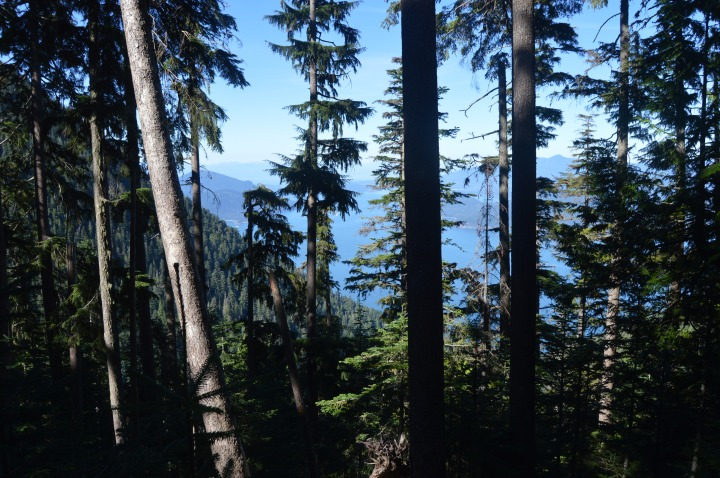 View of Lions bay on the Lions Binkert Trail