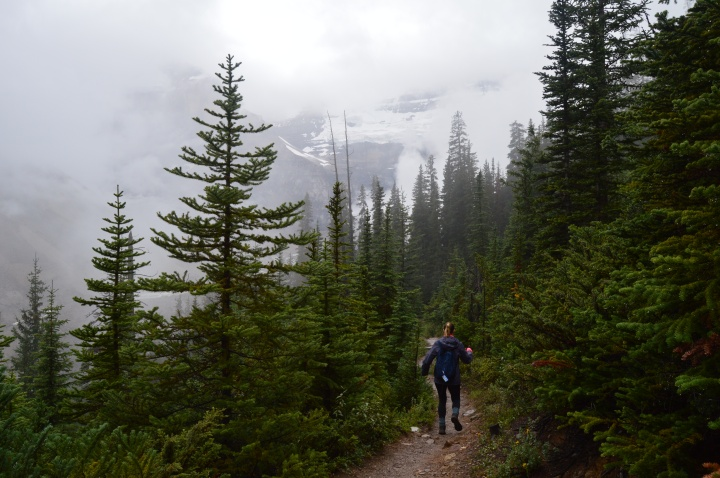 Six Glaciers Trail Lake Louise Hikes