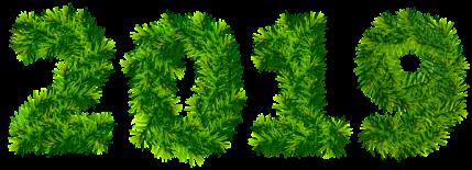 2019 grass